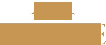 Vivesse Retina Logo